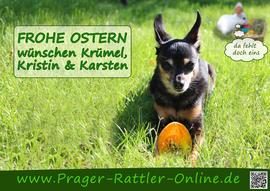 An den Beitrag angehängtes Bild: https://prager-rattler-online.de/wp-content/uploads/2019/04/Ostern2013-1024.jpg